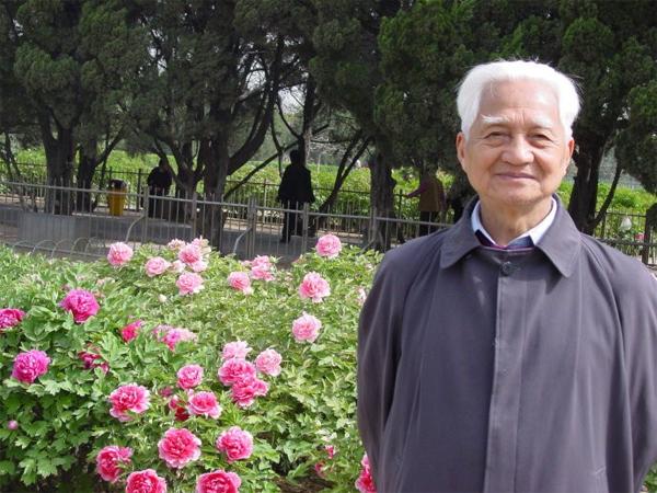 在洛阳王城公园赏牡丹